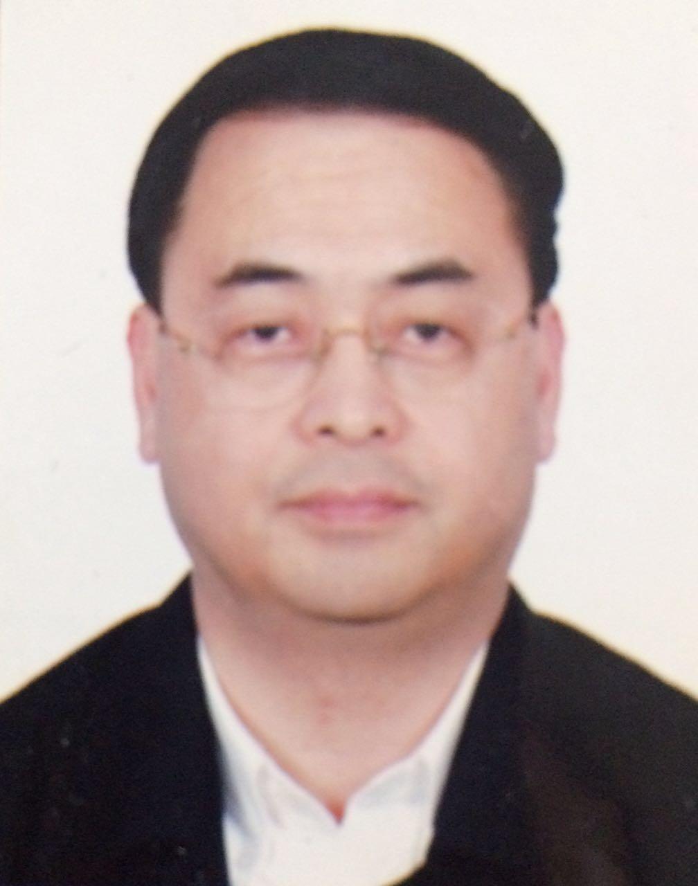 孟丹林(战略顾问)